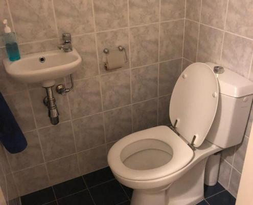 toilet before renovation